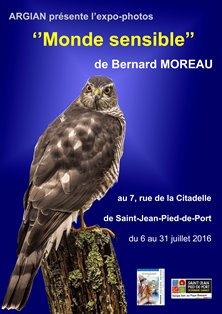 affiche Bernard Moreau 2016 re